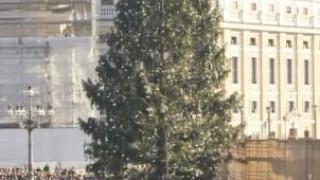 El Papa Francisco habla sobre la Navidad